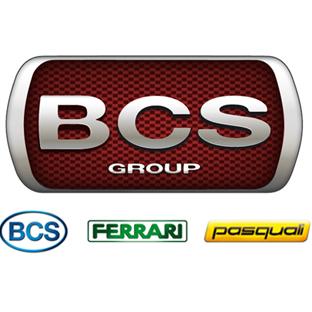 BCS Group